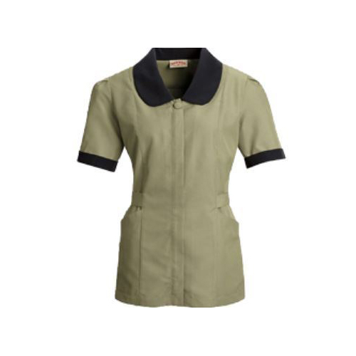 Female Housekeeping Dress